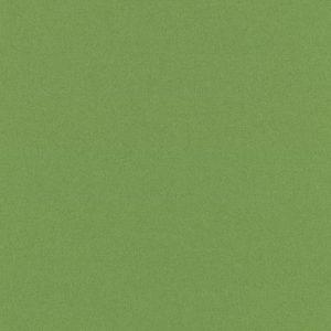 grün-divina3-0956
