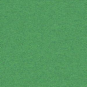 grün-era-CSE18